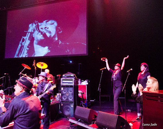 Tribute to Clarence Clemons for Home Safe Charity 10/1/2011 - a photographic chronicle [photos]